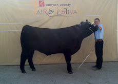 2012 Fourth Place Market Steer