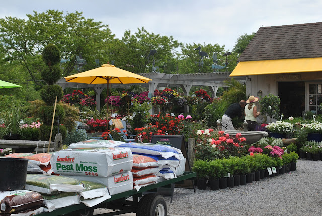 Cbi Food Service Golden Tiger High Gluten Flour