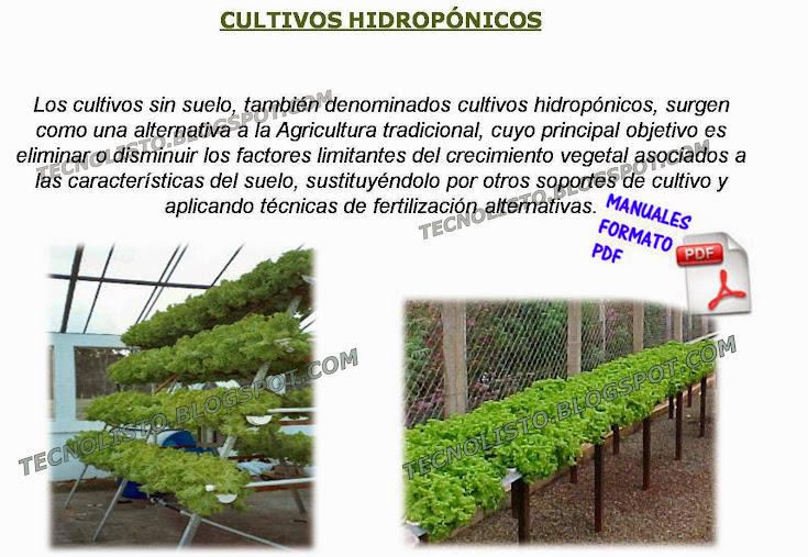 """""""Cultivos hidroponicos"""""""