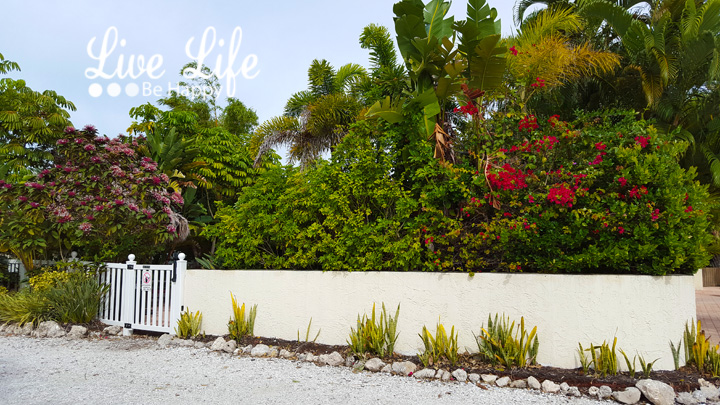 Live Life Be Happy: Sunrise Garden Resort (Review) Anna Maria, Florida