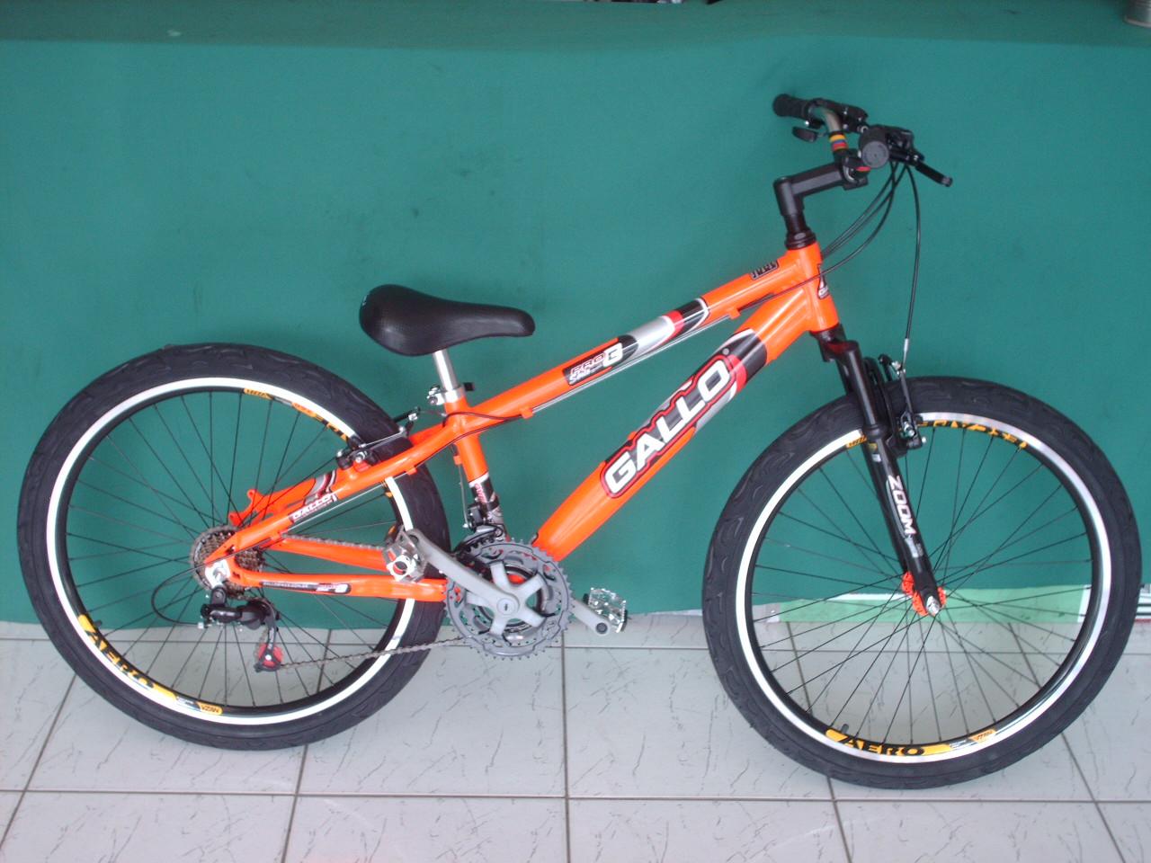 Ciclo Vida Nova  BICICLETAS gallo  ca3e07adf74