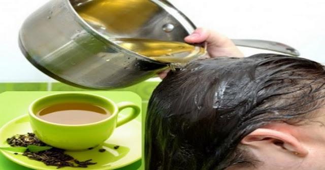 chá verde combate a queda capilar e estimula o crescimento