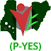 P-YES Recruitment Form Guidelines for Nigerian Youths 2019/2020