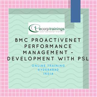 BMC Proactivenet Performance Management - Development With PSL