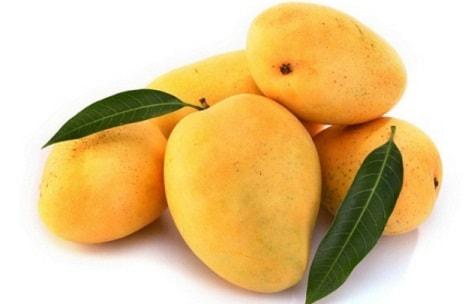 Manfaat buah mangga untuk mengobati penyakit diabetes.