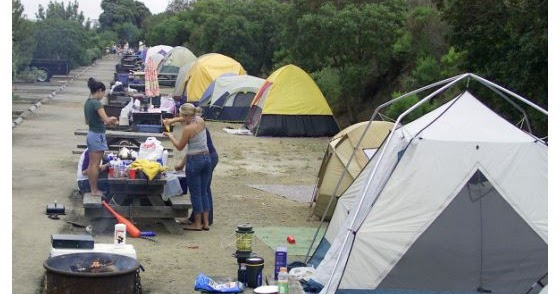 The campground offers electric and water in addition to a dump station. Once Upon A Snork San Onofre State Park Campground Sardine Camping For The Seasoned Flea Market Vendors