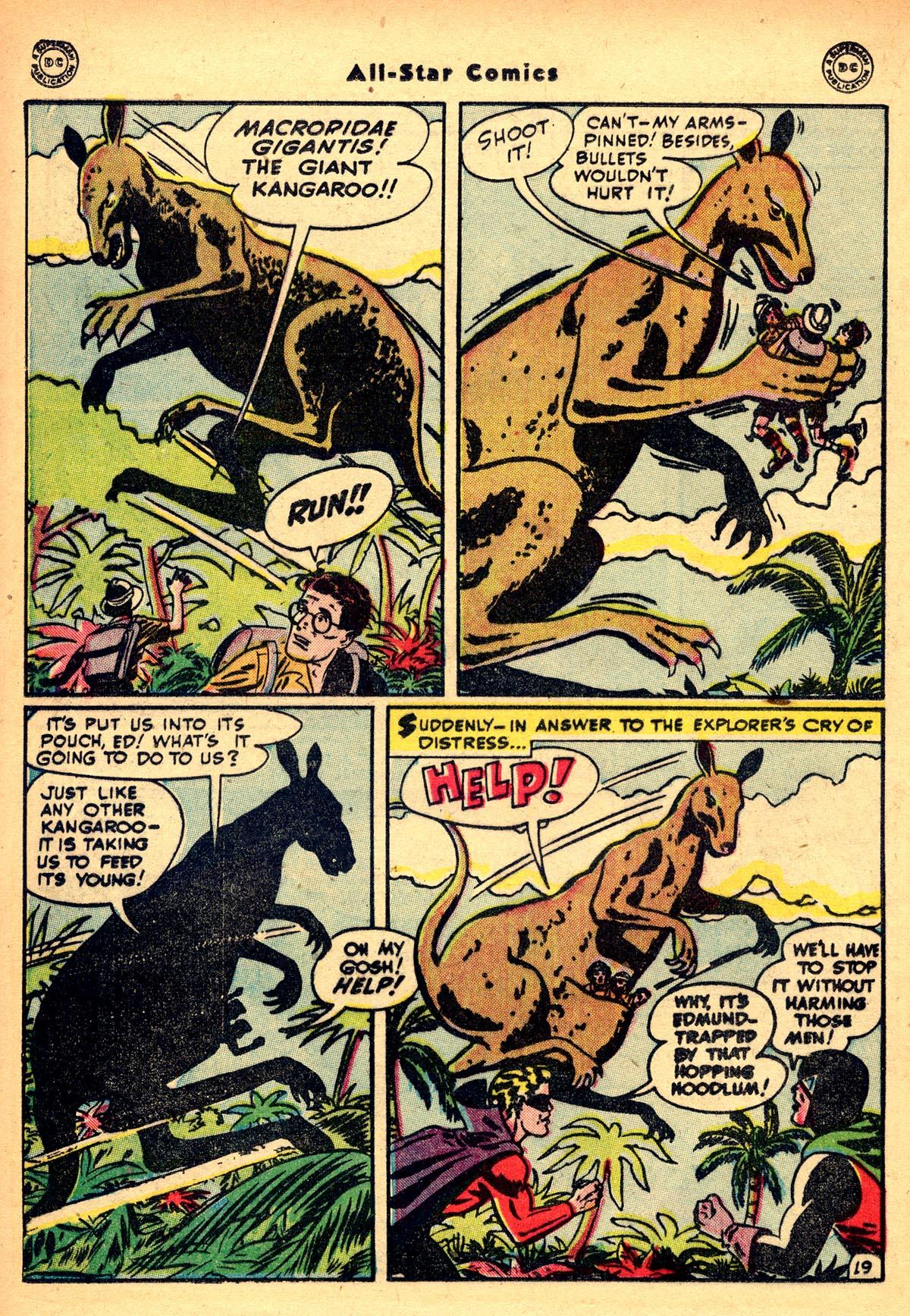 Read online All-Star Comics comic -  Issue #48 - 22