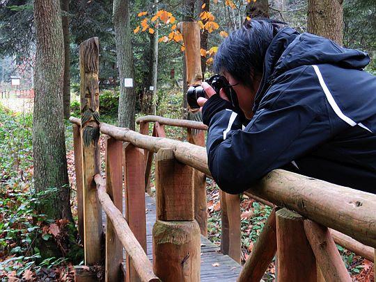 Gromadzenie materiału zdjęciowego na bloga.