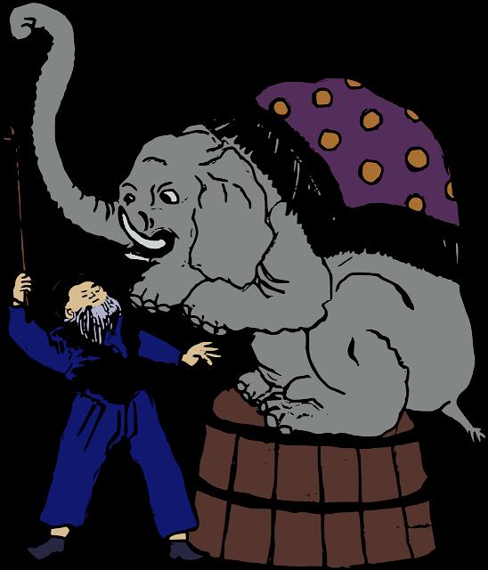 Kisah Seekor Gajah Sirkus