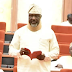 'I Changed My Seat At The Senate Because I Saw Lion, Tiger & Snakes On It' - Melaye