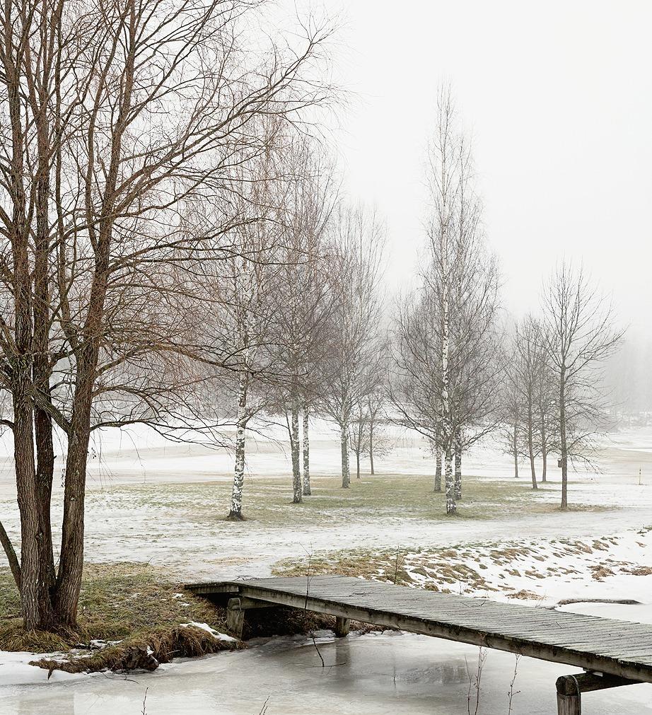 Photography, valokuvaus, valokuvaaminen, taidevalokuvaus, taide, valokuva, luonto, Espoo, Frida Steiner valokuvaaja, Frida S Visuals, Visualaddict, trees, river, winter