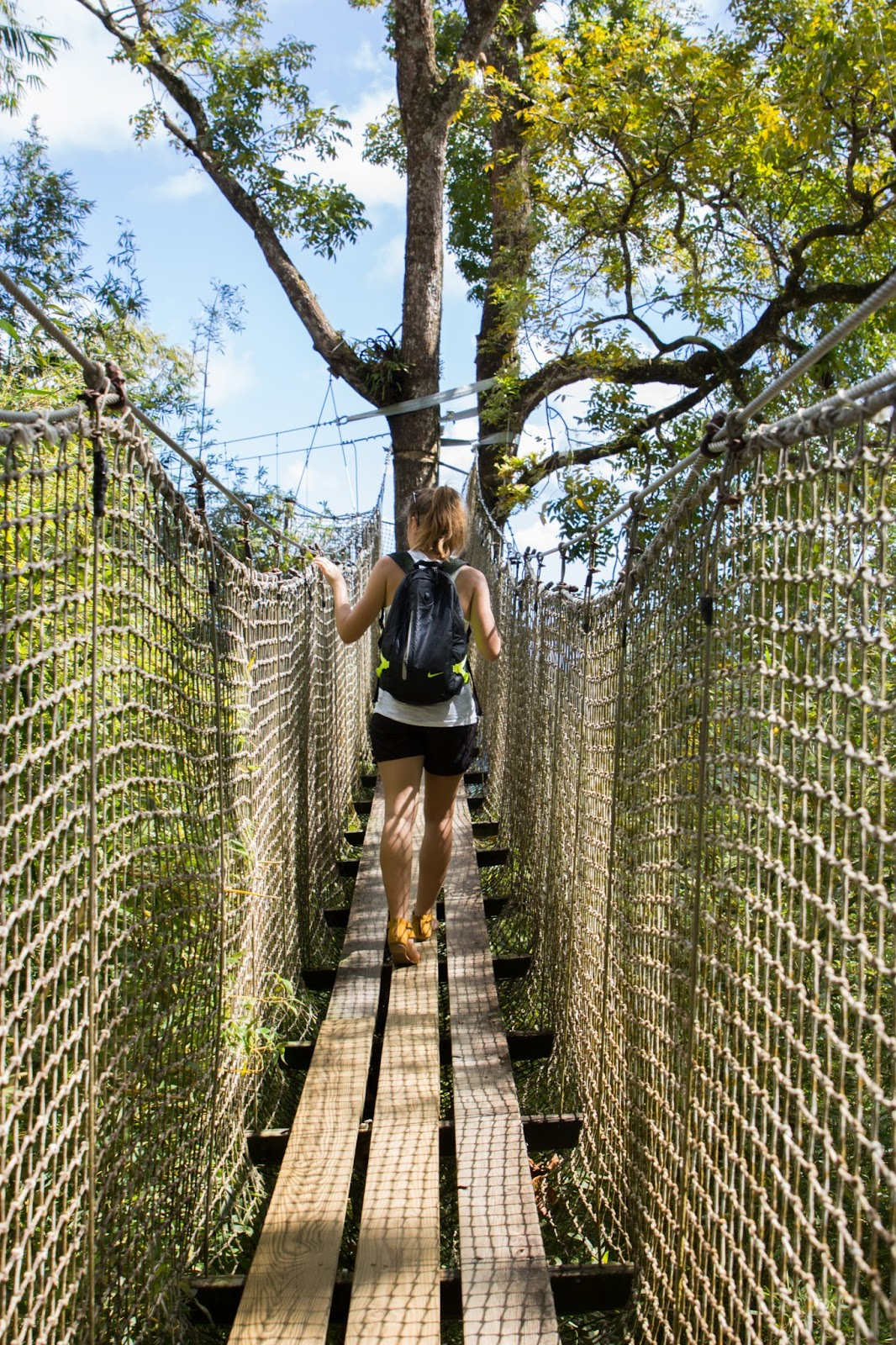 Jardin de Balata pont suspendu