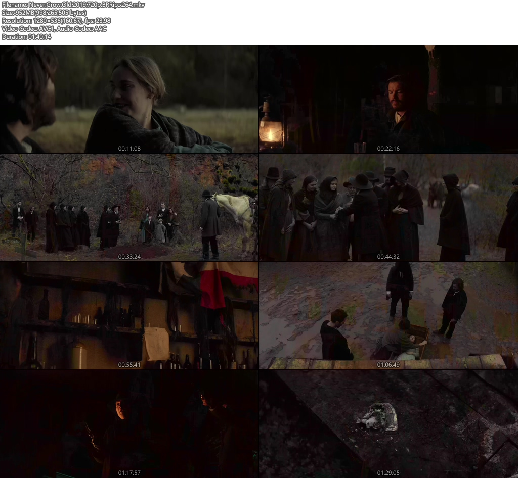 Never Grow Old 2019 720p BRRip x264 | 480p 300MB | 100MB HEVC Screenshot