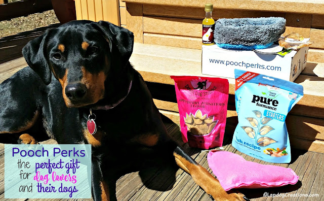 doberman mix rescue dog pooch perks subscription box