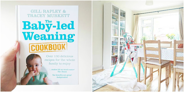 Gill Rapley Baby Led Weaning Cookbook Review