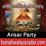http://www.humaliwalayazadar.com/2017/09/ansar-party-nohay-2018.html