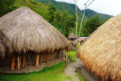 Gambar Mewarnai Rumah Adat Papua
