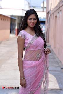 Telugu Actress Shalu Chourasiya Stills in Cute Pink Saree at Pochampally IKAT Art Mela  0018.jpg