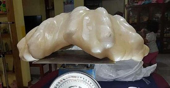 Maior pérola do mundo encontrada embaixo da cama de pescador nas Filipinas