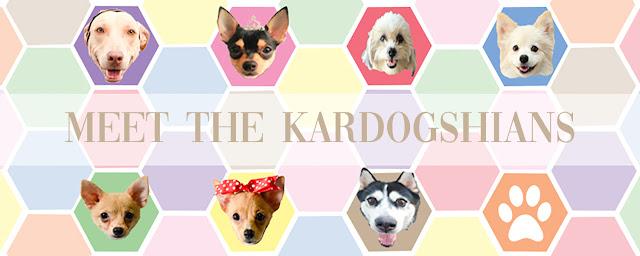 We Are The KARDOGSHIANS