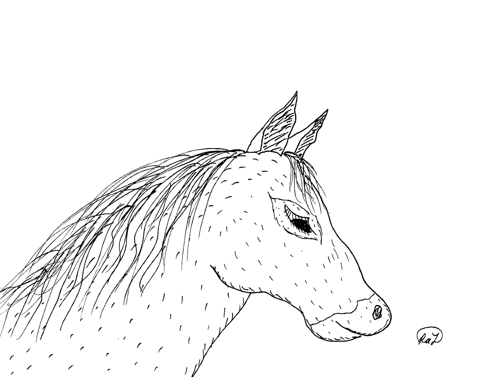 Robin\'s Great Coloring Pages: American Quarter Horse and American ...
