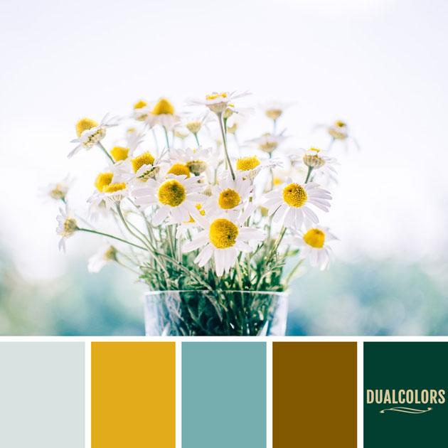 color_paleta_115