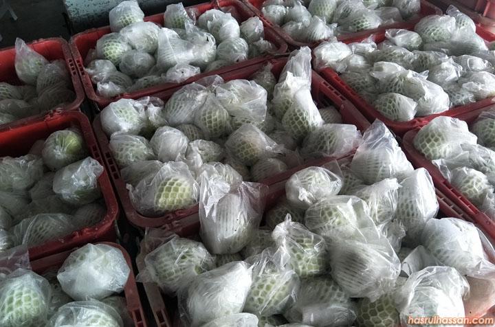 Jambu batu diasingkan ikut gred di kilang jambu Trong