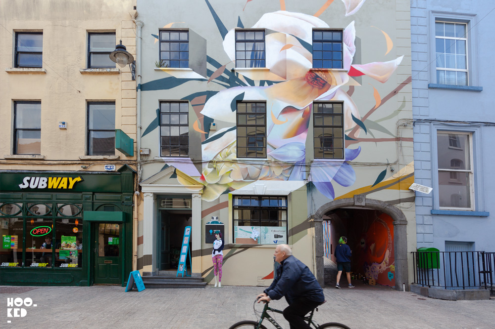 Street Artists transform Waterford City, mural by artist Curtis Hylton