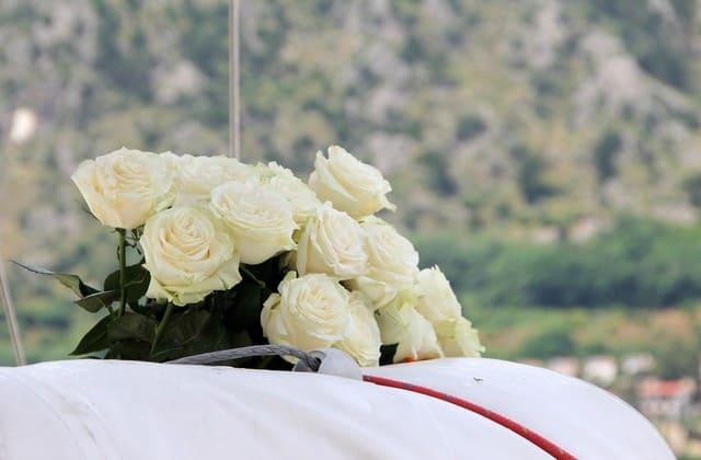 Mawar putih memiliki banyak makna kehidupan, mulai kesucian hingga kemurnian