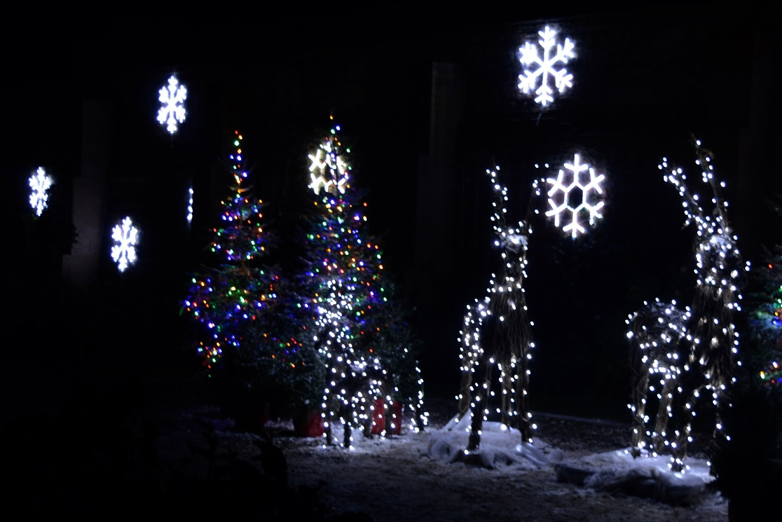 Winter Wonderland Christmas Light Show | A Wynyard Hall Garden Event - A Review - snowflakes