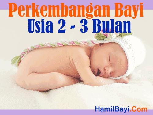 perkembangan bayi usia 2 hingga 3 bulan waniperih tempat baca berita sai mata perih