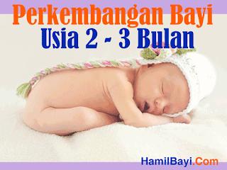 Perkembangan Bayi Usia 2 sampai 3 Bulan
