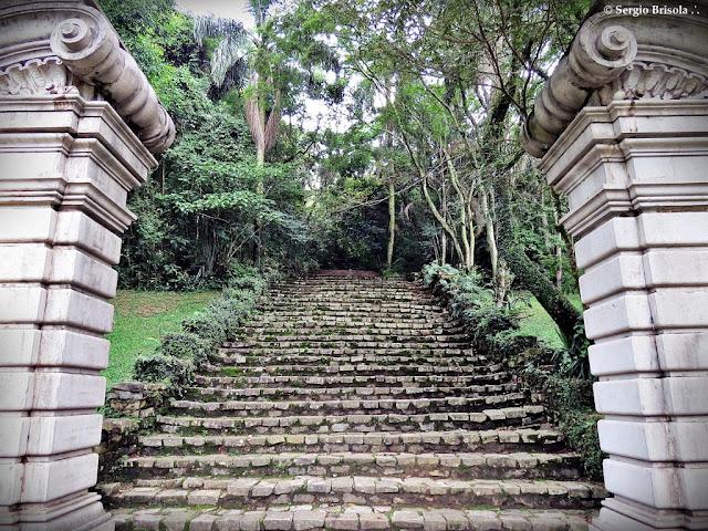 Vista frontal das Escadarias Jardim de Lineu no Jardim Botânico