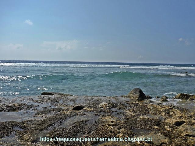 Praia rochas