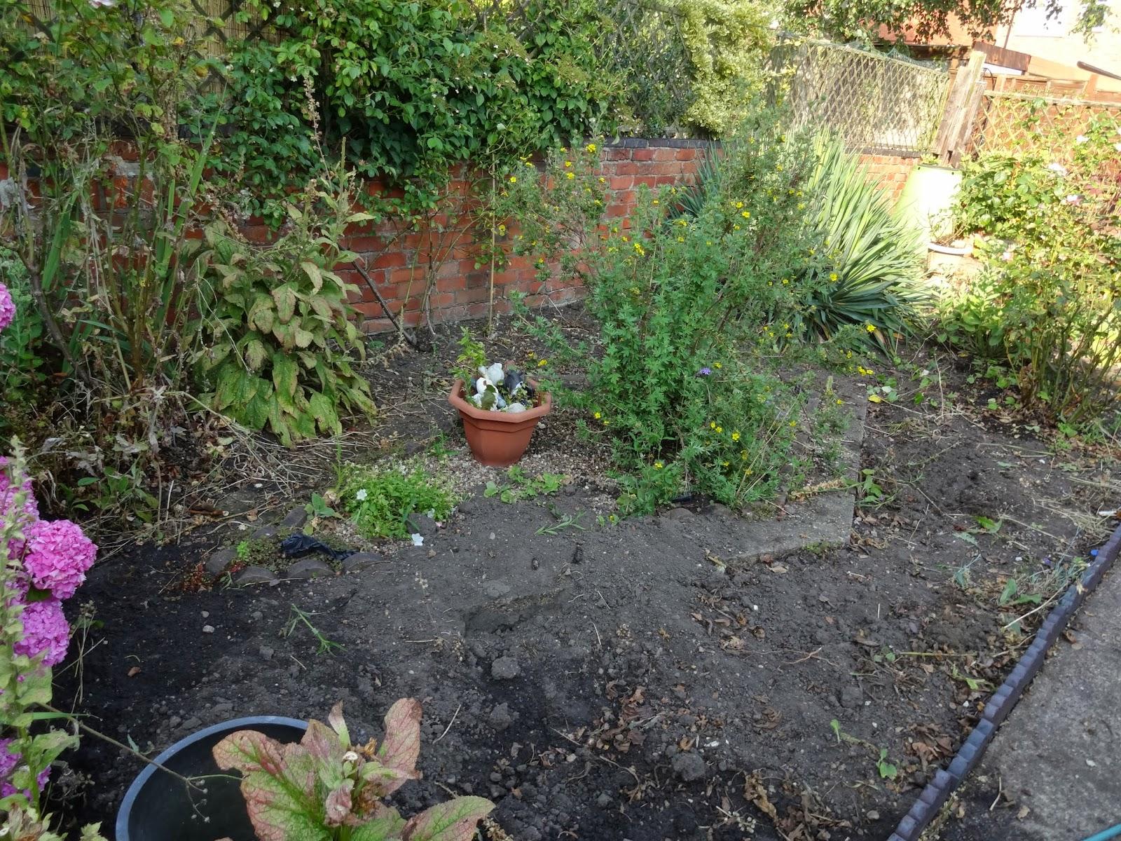 garden renovation in victorian terrace