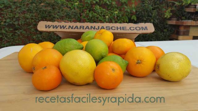 recetas fáciles y rápidas con naranjas y limones