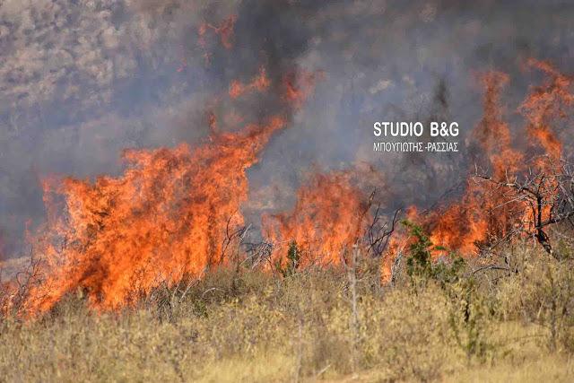 Πυρκαγιά στις Λίμνες Αδαμίου στην Αργολίδα