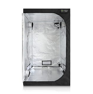 What Size Grow Tent should be chosen for growing marijuana indoors?