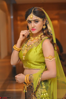 Sony Charishta in Green Choli Ghagra Transparent Chunni Ethnic Wear March 2017 066.JPG
