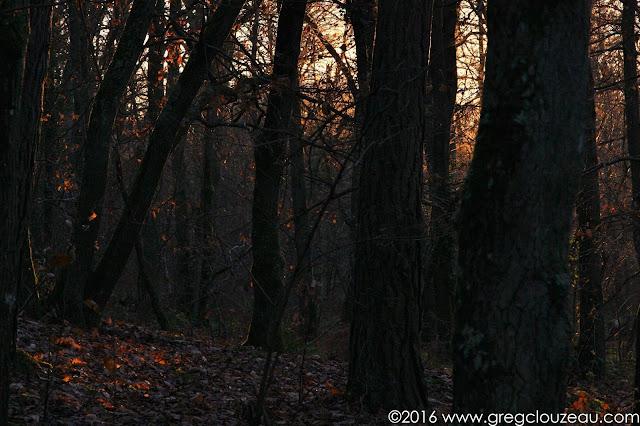 Clair obscur dans les Trois Pignons, (C) 2016 Greg Clouzeau