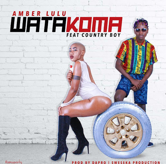 Amber Lulu Ft Country Boy - Watakoma |Download Mp3