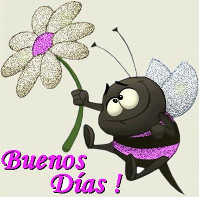 abejita negra Buenos Días