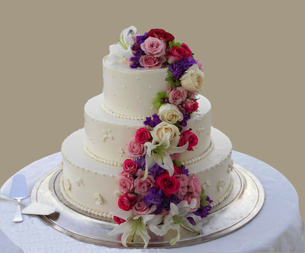 Happy Wedding Anniversary Cute Zoozoo Cake Name Pics