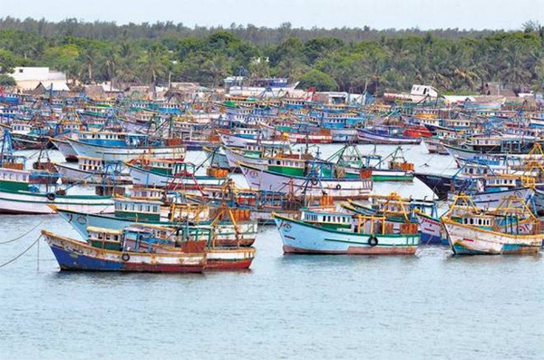 News, Thiruvananthapuram, Kerala, Top-Headlines, Harber, Strike, Boat, Desal, Price, Increase, Diesel price hike; Indefinite strike between fishery sectors in the state