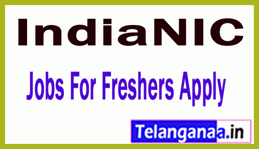 IndiaNIC Recruitment Jobs For Freshers Apply
