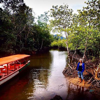 pulau kapo kapo wisata mandeh