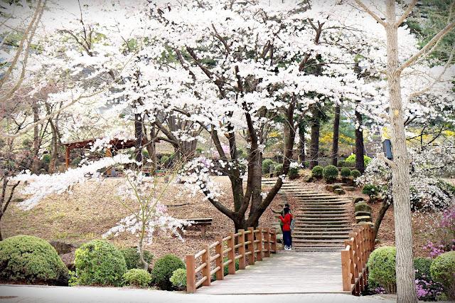 Tuyển Phiên Dịch Tiếng Hàn Bộ Phận Kinh Doanh