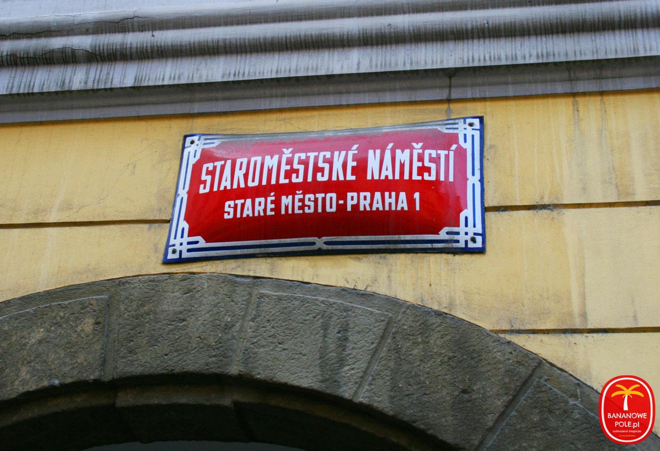 Wegańska PRAGA