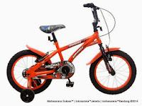 Sepeda Anak WIMCYCLE FIREBIRD 16 Inci