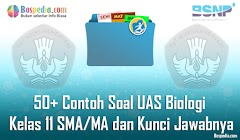 Lengkap - 50+ Contoh Soal UAS Biologi Kleas 11 SMA/MA dan Kunci Jawabnya Terbaru